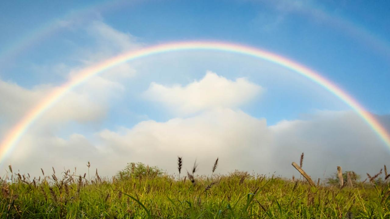 Rainbow in field Hawaii