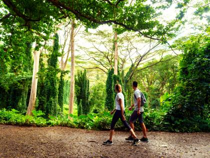 Couple walking through hiking path