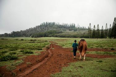 Woman walking with horse in Lanai